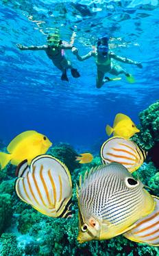 Coral Gardens Snorkel Girls