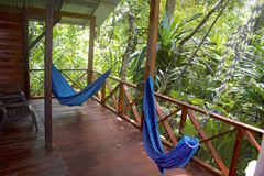 Cabina hammocks